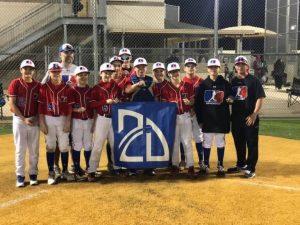 RBI-Acadmey-Professional-Baseball-Team